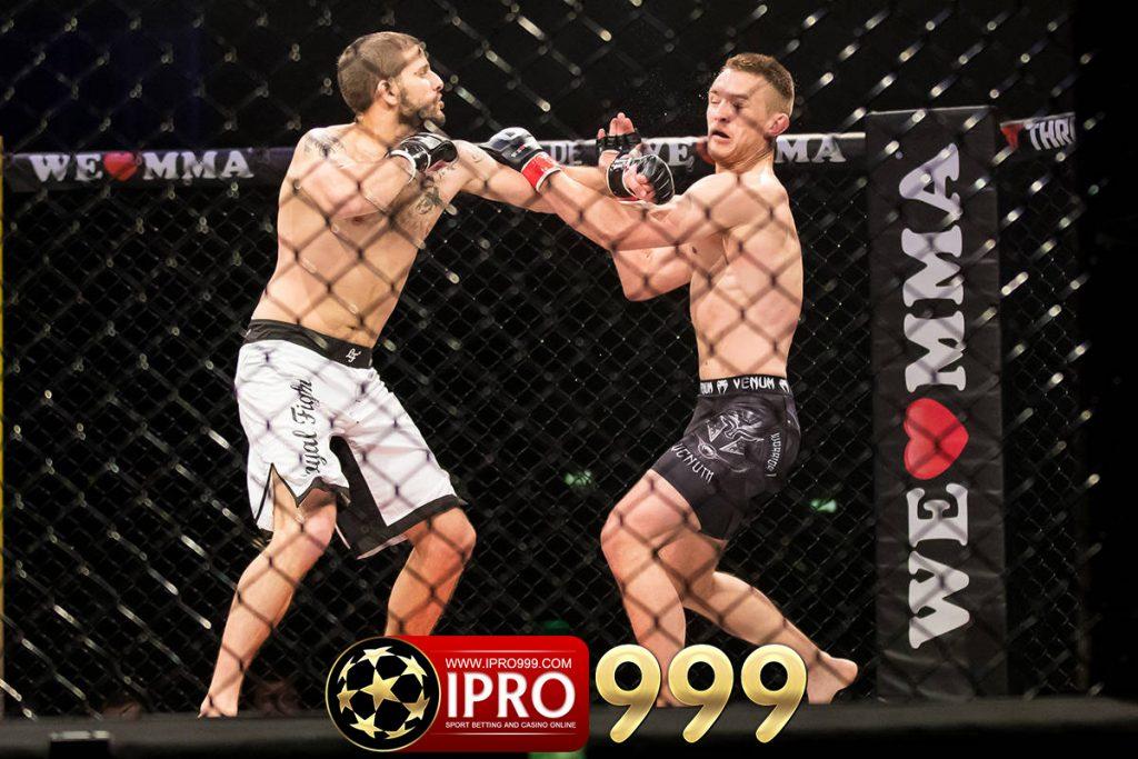 ipro999.com